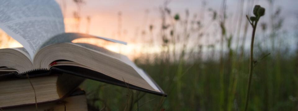 the-pandemic-has-hit-bible-societies-hard1