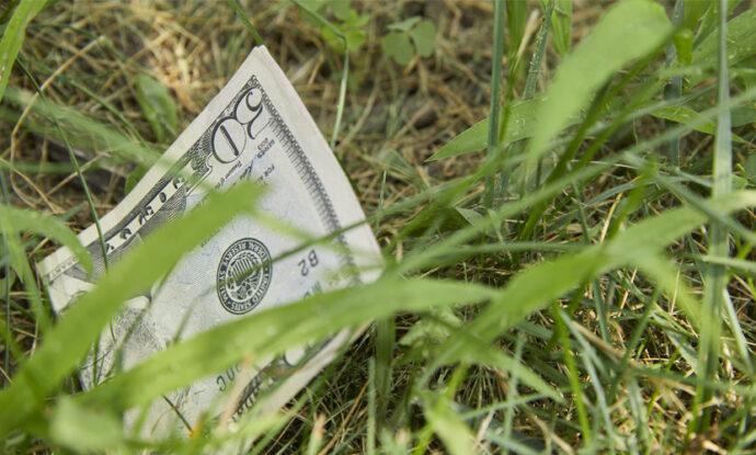 half-a-50-dollar-bill-in-his-backyard1