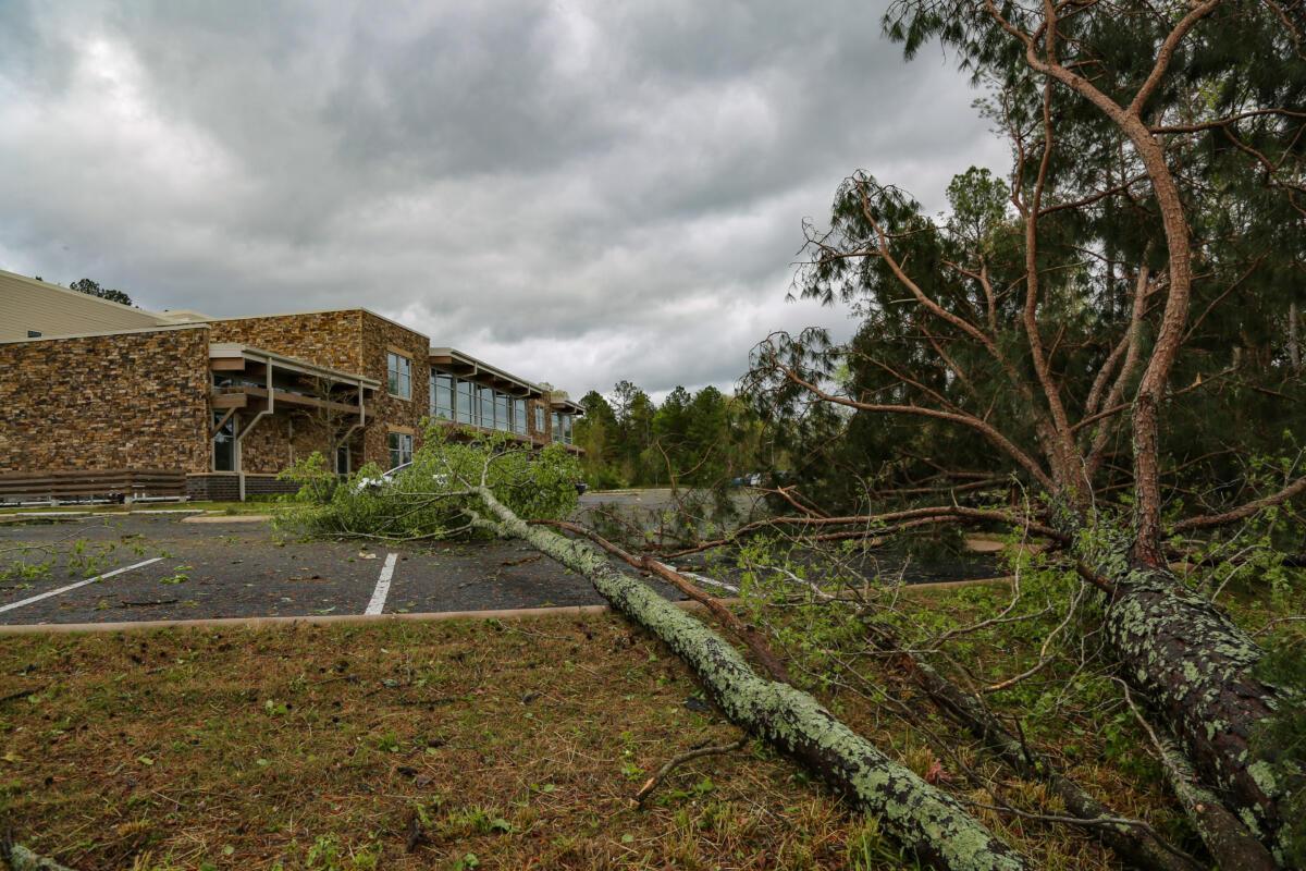IIW-storm-damage-2